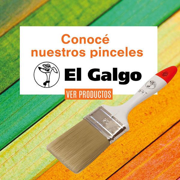 Pinceles Galgo Promoción